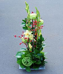 Цветы в офисы, бизнес-центры, на конференции