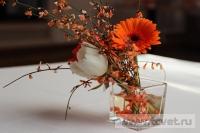 Оранжевое настроение в ресторане Ромашка. Фото 3