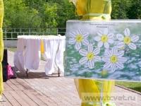 Ромашковая свадьба. План рассадки гостей поляны Ромашковая