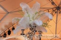 Свадьба в стиле Гэтсби в шатре. Фото 19