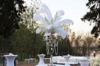 Свадьба в стиле Гэтсби в шатре. Фото 66