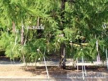 Украшение свадебного шатра в Парке Победы. Фото 29
