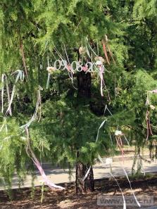 Украшение свадебного шатра в Парке Победы. Фото 7