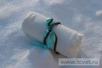 Зимняя свадьба с Белыми тюльпанами Кузьминки. Фото 21