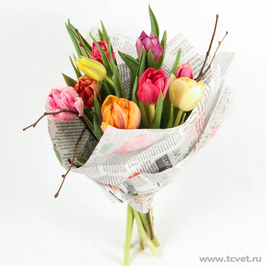 Тюльпаны микс в упаковке M