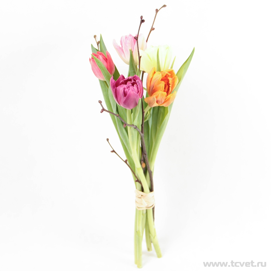 Тюльпаны микс S
