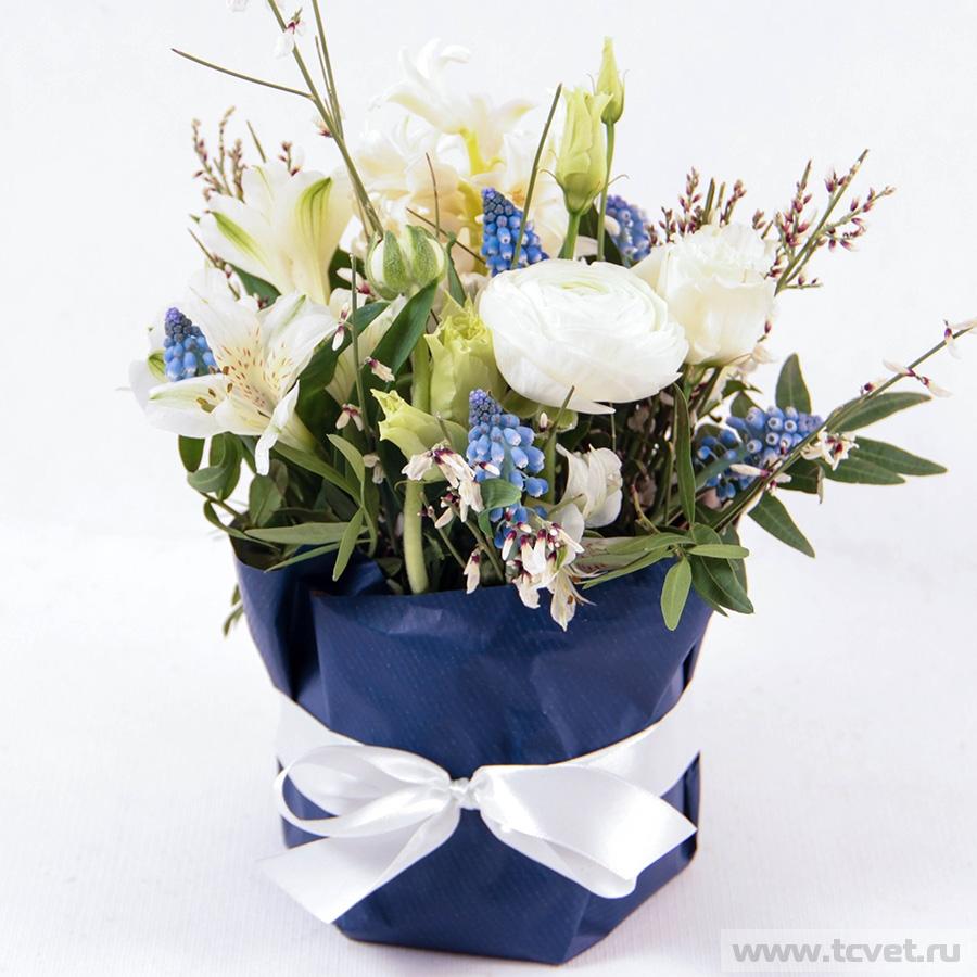 Весенняя улыбка бело-синяя