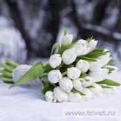 Букет невесты Белая голубка