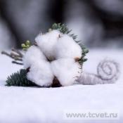 Бутоньерка Зимняя сказка