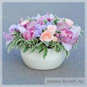 Цветы в керам. кашпо Розовое Настроение