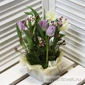 Композиция с тюльпанами Для радости