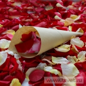 Лепестки роз в кульке