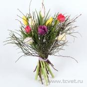 Тюльпаны микс с черничником M