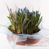 Весенний сад композиция в круглой коробке L