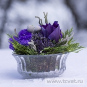 Композиция Виолетта в вазе