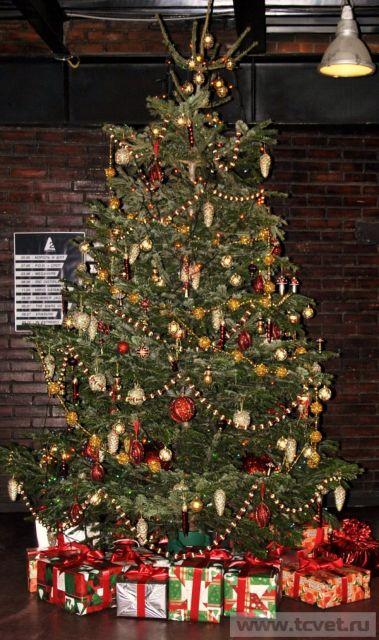 Оригинальное украшение елки