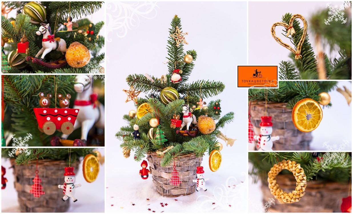 Новогодние композиции из еловых веток своими руками фото