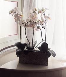 Декор цветами домов и квартир