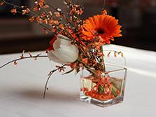 Оранжевое настроение в ресторане Ромашка