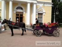 Фото с фестиваля Императорский букет - 2012. Фото 18