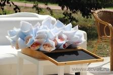 Летняя свадьба в Валуево. Фото 7