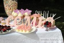 Летняя свадьба в Валуево. Фото 9