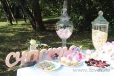 Летняя свадьба в Валуево. Фото 11