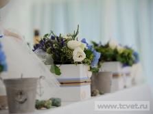 Морская свадьба в Валуево. Фото 11