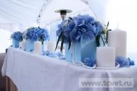 Небесная свадьба в Большом шатре Валуево. Фото 31