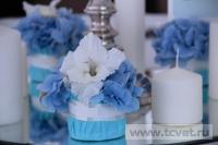 Небесная свадьба в Большом шатре Валуево. Фото 40