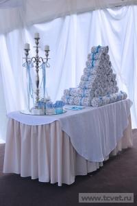 Небесная свадьба в Большом шатре Валуево. Фото 6