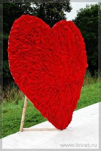 Оформление Love is. Фото 14