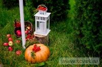Осенняя свадьба в загородном клубе ArtiLand. Фото 14