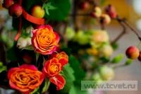 Осенняя свадьба в загородном клубе ArtiLand. Фото 9