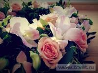 Свадьба в загородном парк-отеле Белые аллеи. Фото 2