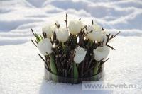 Зимняя свадьба с Белыми тюльпанами Кузьминки. Фото 36