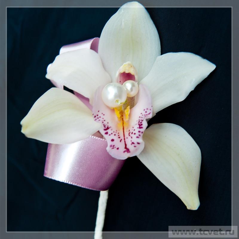 Бутоньерка жениха Жемчужная орхидея
