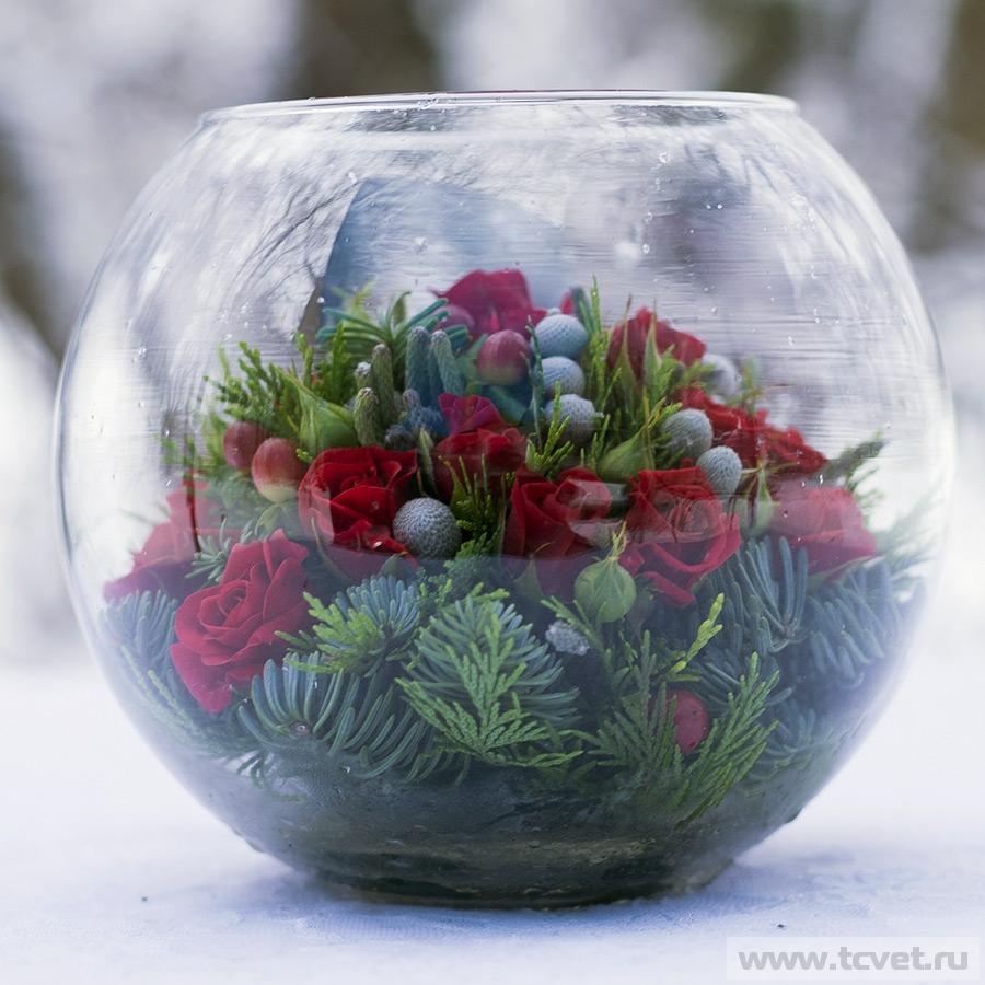 Морозное утро в круглой вазе