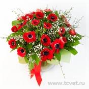 Букет для влюбленных Красные анемоны